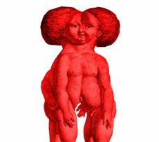 Wunderkammer, Kunstausstellung in Stettin, 13.09 – 12.10.2012